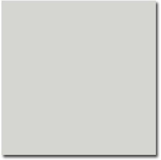 Evolution Mint 15x15