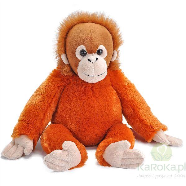 Orangutan baby - Wild Republic - maskotka pluszowa