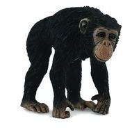 Szympans samica M - Collecta
