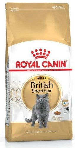 ROYAL CANIN British Shorthair 10kg + niespodzianka dla kota GRATIS!