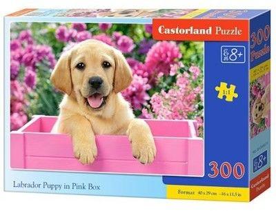 Puzzle Castor 300 - Szczeniak Labladora, Labrador Puppy in Pink Box