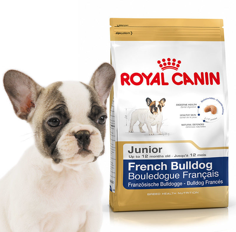 ROYAL CANIN French Bulldog Junior 10kg + niespodzianka dla psa GRATIS!