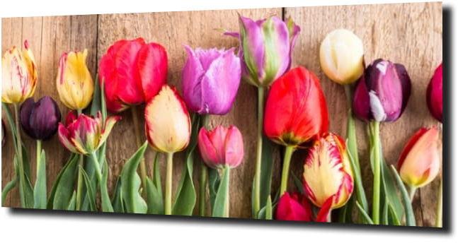 obraz na szkle, panel szklany Tulipany 1 125X50