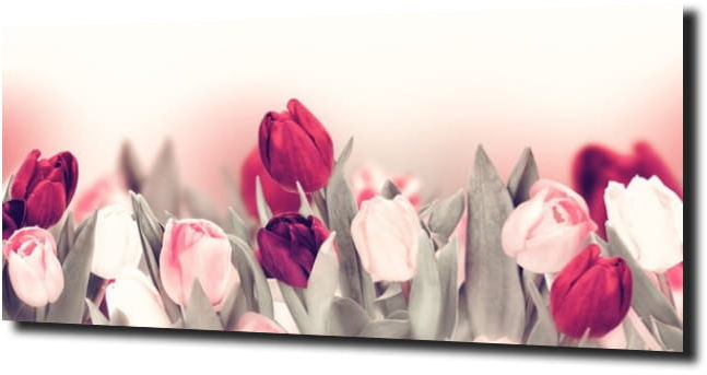 obraz na szkle, panel szklany Tulipany 3 125X50