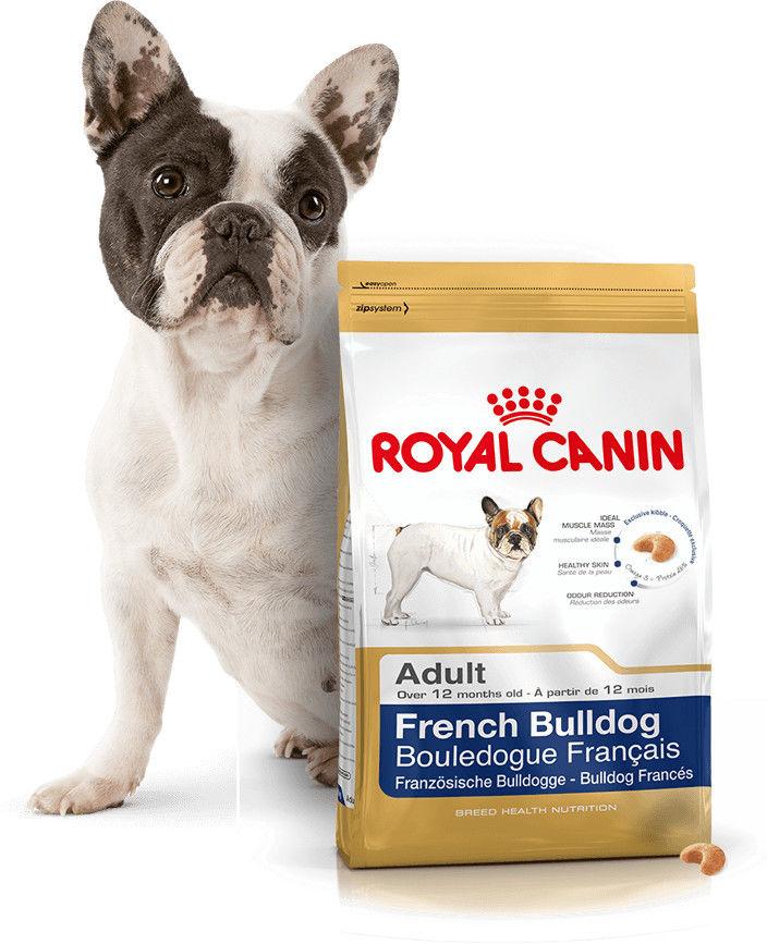 ROYAL CANIN French Bulldog Adult 9kg + niespodzianka dla psa GRATIS!