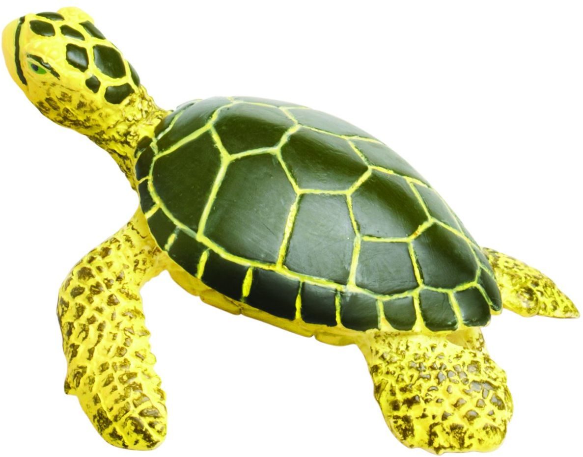 "Safari s201329 ""Sea Life Green Sea Turtle Baby"" miniatura"