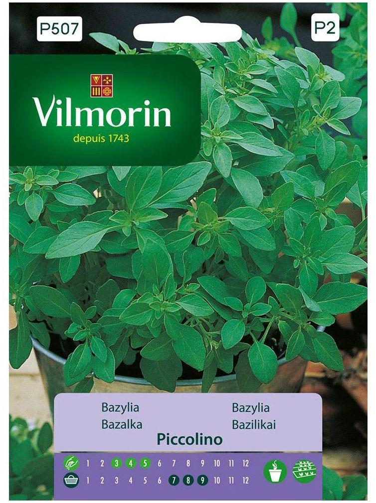 Bazylia PICCOLINO nasiona tradycyjne 1 g VILMORIN