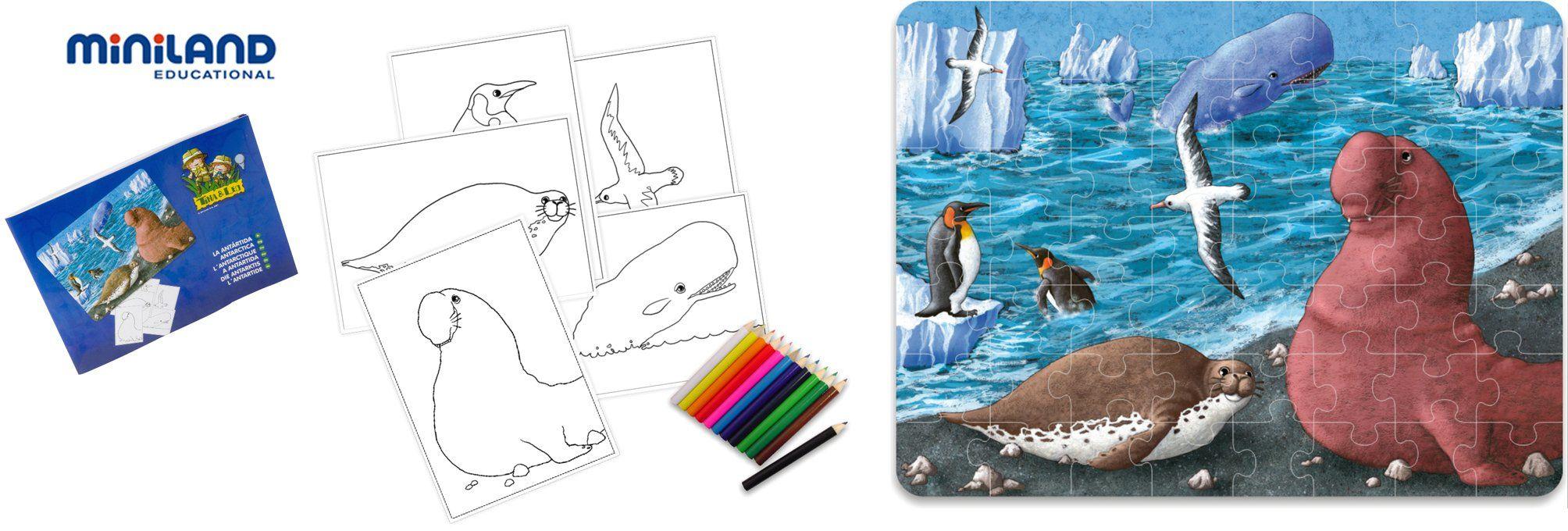 Miniland 36025 - Puzzle przestrzeń życiowa Antarktida 56 części 42 x 31 cm