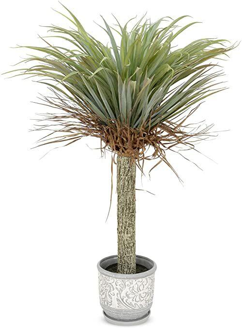 MULTI CASA MEX CH06718933 Yucca H.105 sztuczne drzewko doniczkowe, zielone, tworzywo sztuczne, poliester, bardzo szerokie