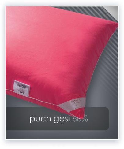 AMZ PUCH GĘSI 60% poduszka 40x40