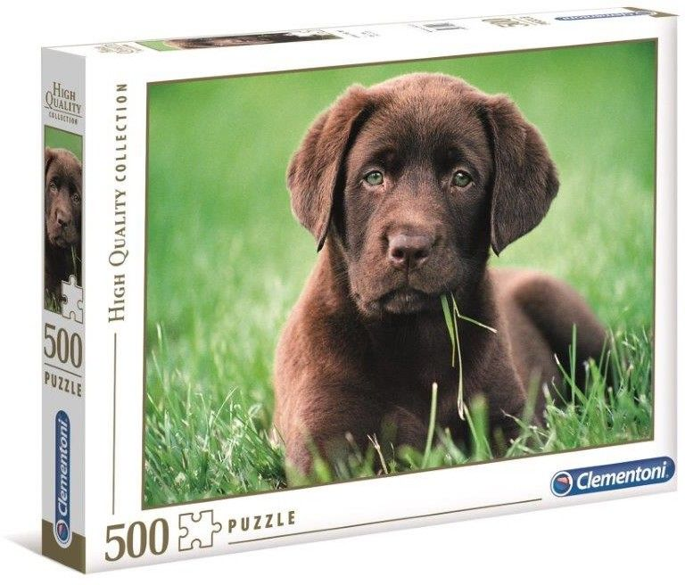 Puzzle Clem. 500 - Czekoladowy szczeniak, Chocolate Puppy