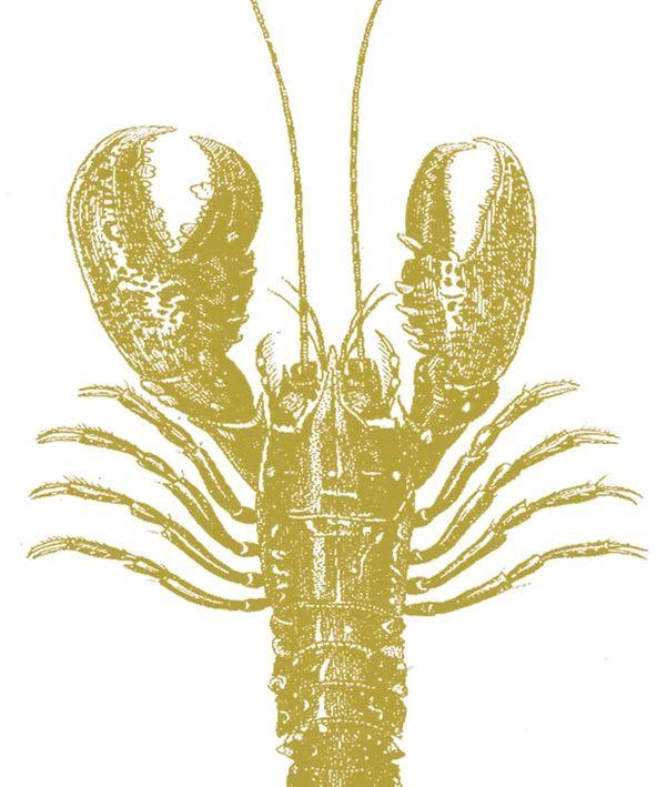 SERWETKI PAPIEROWE - Lobster Gold - Złoty Homar