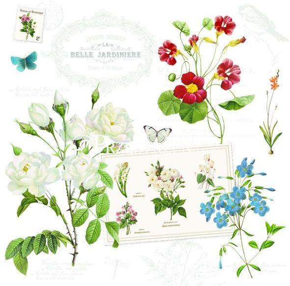 SERWETKI PAPIEROWE - Natural - Kwiaty