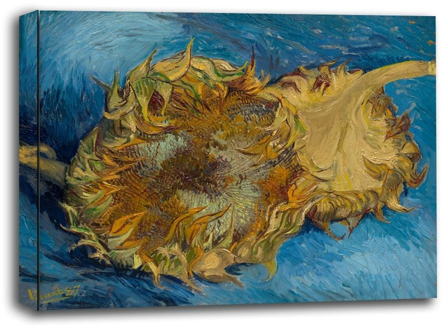 Sunflowers, vincent van gogh - obraz na płótnie wymiar do wyboru: 70x50 cm