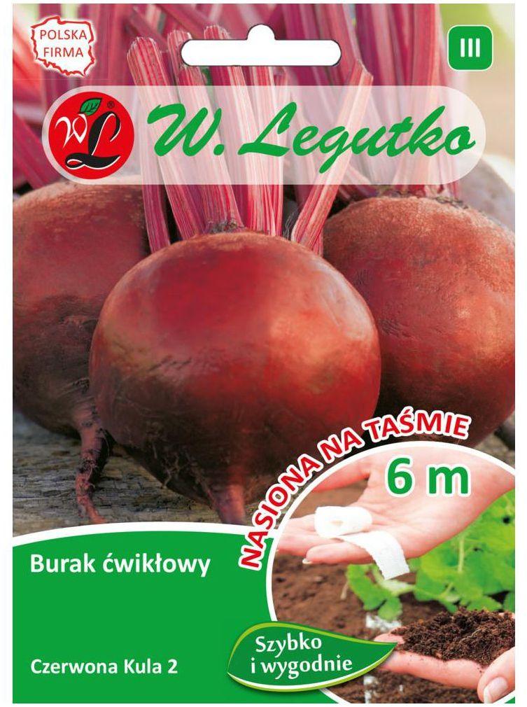 Burak ćwikłowy CZERWONA KULA 2 nasiona tradycyjne 10 g W. LEGUTKO