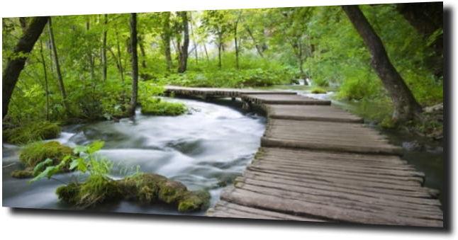 obraz na szkle Drewniany most w lesie 120X60