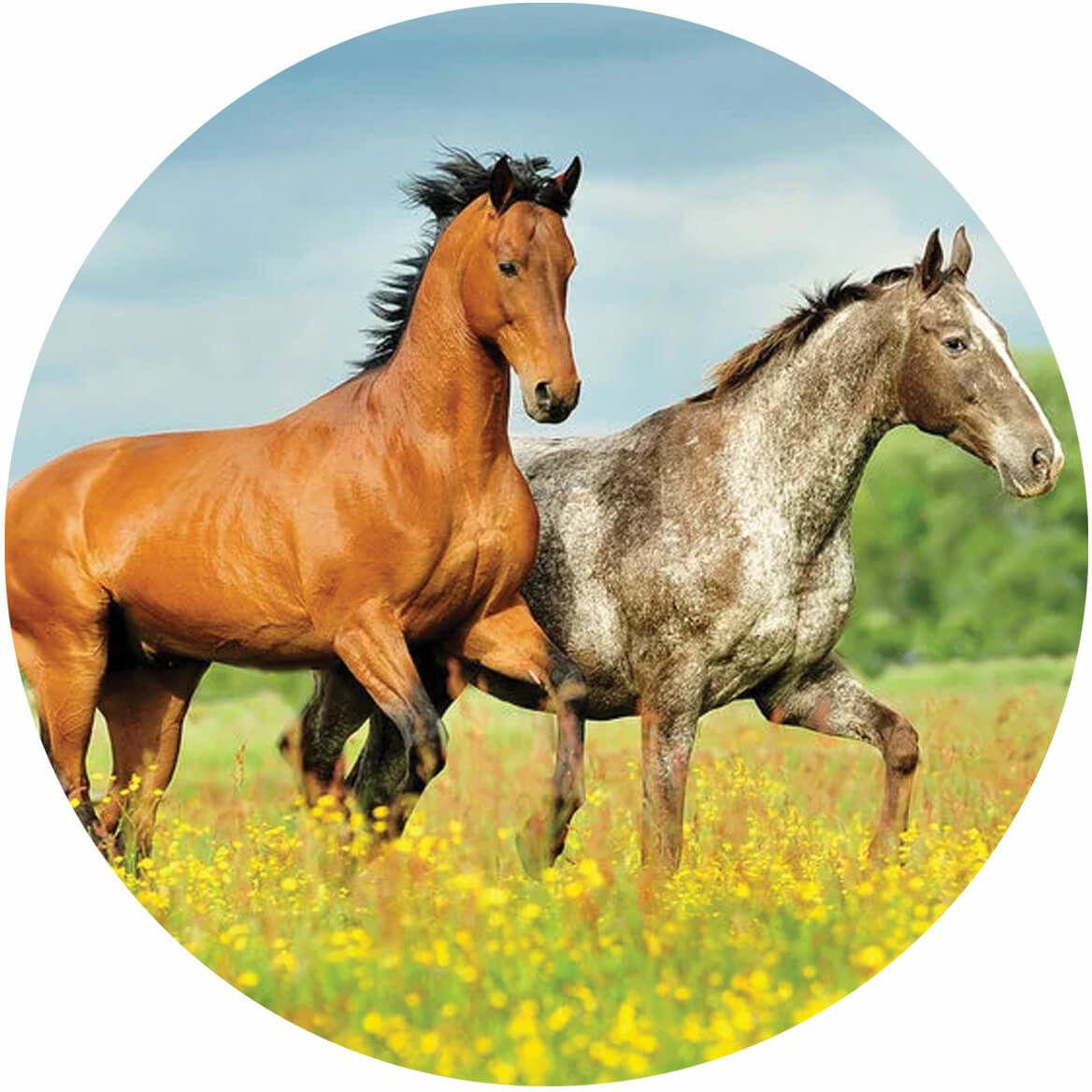 Dekoracyjny opłatek tortowy Konie - 20 cm