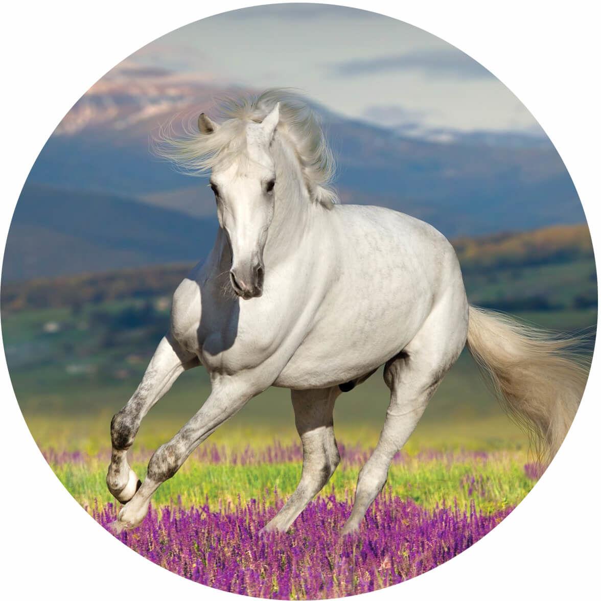 Dekoracyjny opłatek tortowy Biały Koń- 20 cm