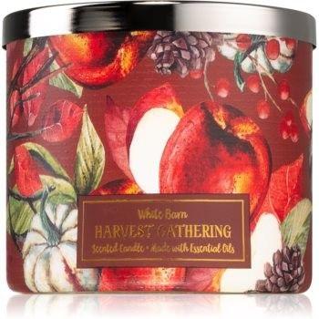 Bath & Body Works Harvest Gathering świeczka zapachowa I. 411 g