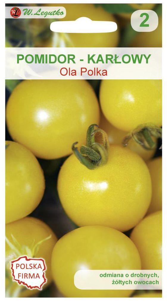 Pomidor gruntowy karłowy OLA POLKA nasiona tradycyjne 0.5 g W. LEGUTKO