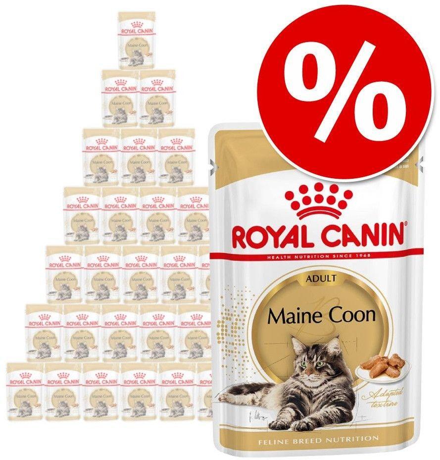 Royal Canin Ageing +12 karma mokra w galaretce dla kotów dojrzałych saszetka 85g Royal Canin Feline DLA ZAMÓWIEŃ + 99zł GRATIS!