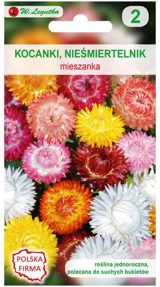 Kocanki (Nieśmiertelnik) MIESZANKA nasiona tradycyjne 0.8 g W. LEGUTKO