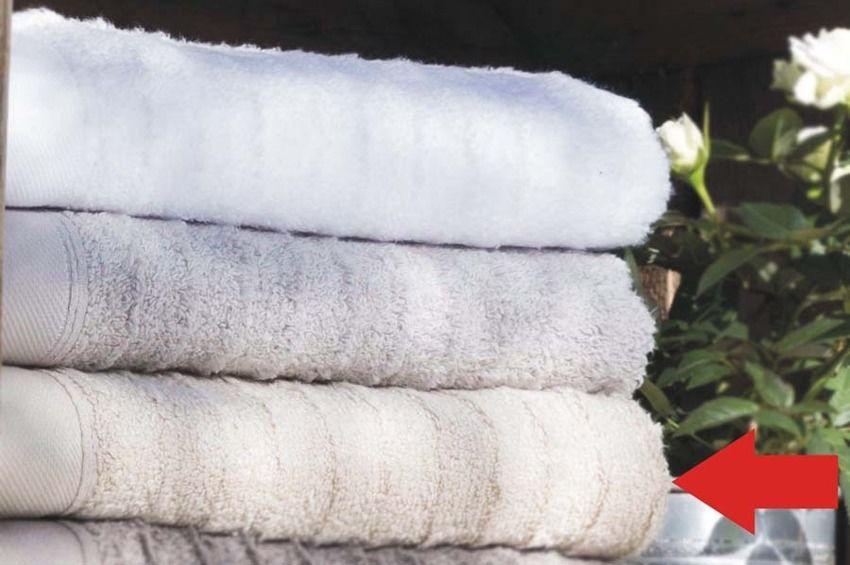 Ręcznik Rochas Loft Kremowy