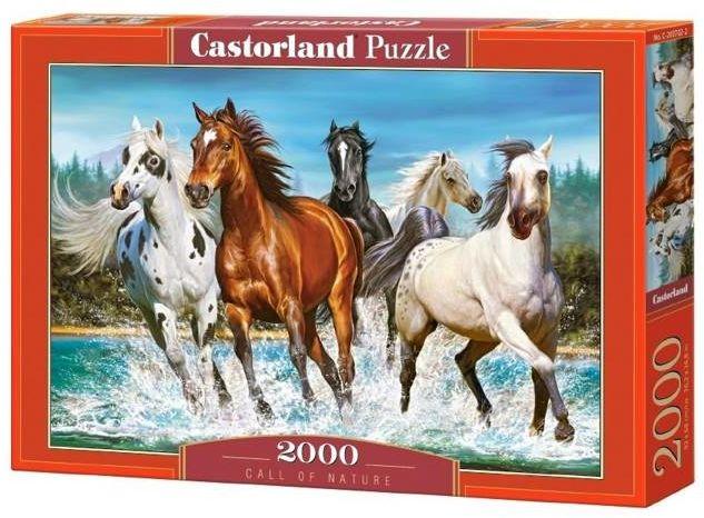 Puzzle 2000 Call of Nature CASTOR - Castorland