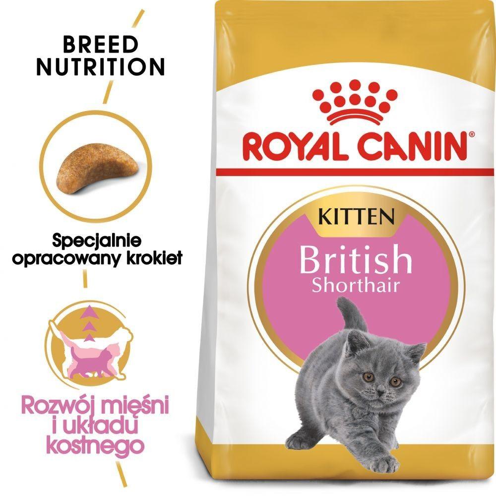 Royal Canin British Shorthair Kitten karma sucha dla kociąt, do 12 miesiąca, rasy brytyjski krótkowłosy 2kg Royal Canin Feline DLA ZAMÓWIEŃ + 99zł GRATIS!