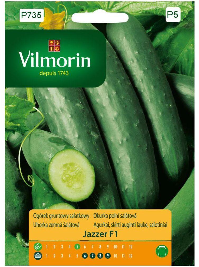 Ogórek gruntowy sałatkowy JAZZER F1 nasiona tradycyjne 10 szt. VILMORIN