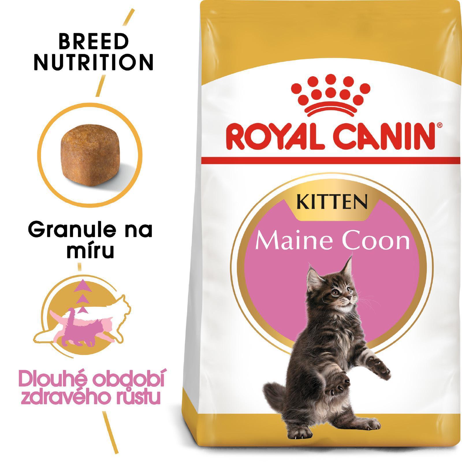 Royal Canin cat KITTEN MAIN COON