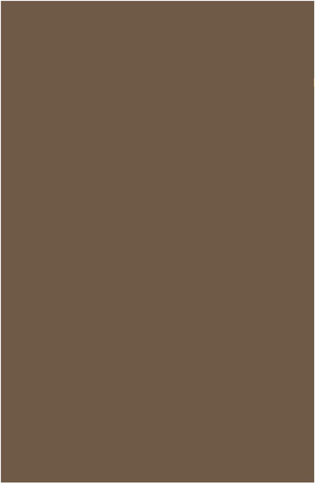 Karton kolor A1 brązowy Lux Interdruk 119