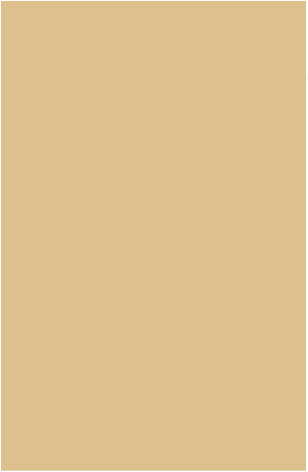Karton kolor A1 piaskowy Lux Interdruk 101