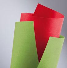 Karton ozdobny A4 Standard Holland zielony 20 szt