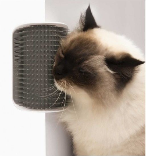 Catit Senses 2.0 Self Groomer - szczotka dla kota montowana do ścian/ mebli