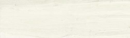 Camper White 29,75x99,55