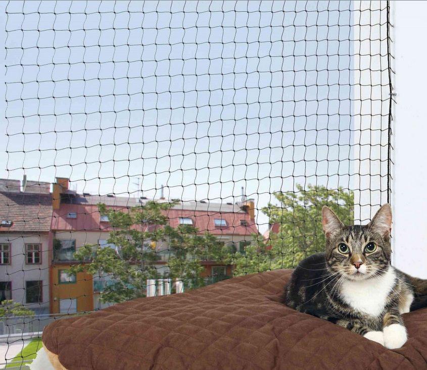 Ochrona sieci dla kotów