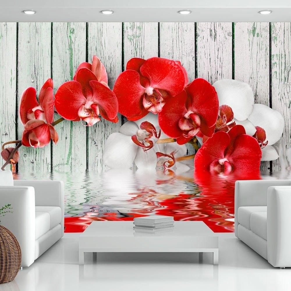 Fototapeta - rubinowa orchidea