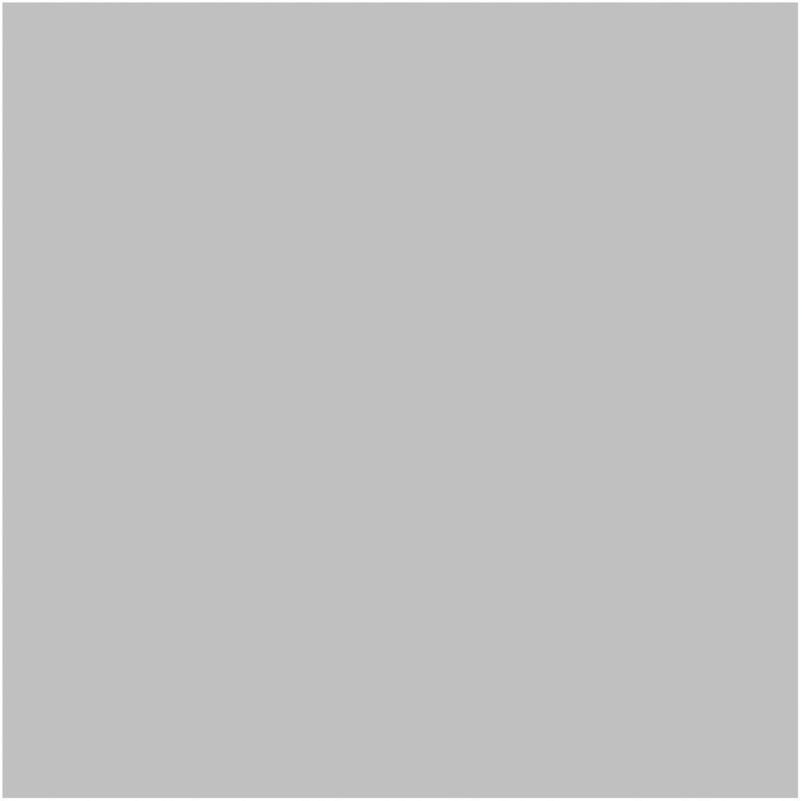 Karton kolor A1 srebrny Interdruk