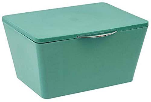 Wenko 23580100 pudełko do przechowywania z pokrywą z mosiądzu, odporne na pękanie, 19 x 10 x 15,5 cm, zielone