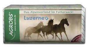 LUZERNE +lucerna 15kg - ST HIPPOLYT