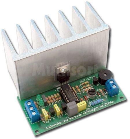 Ładowarka akumulatorów ołowiowych 10-200 Ah (do montażu)