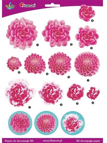 Papier do decoupage 3D kwiaty chryzantemy arkusz - Titanum