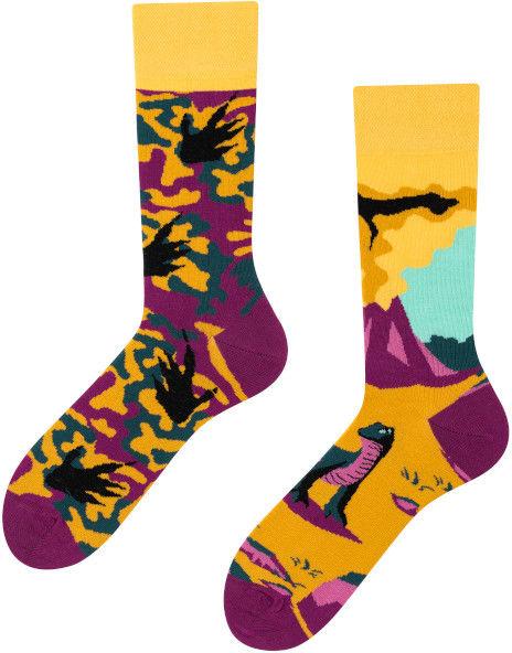 Dinozaur, Todo Socks, Gad, Zwierzę, Kolorowe Skarpetki