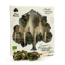 Herbatka na patyku OCZYSZCZAJĄCA BIO (8 x 2,5 g) Dary Natury