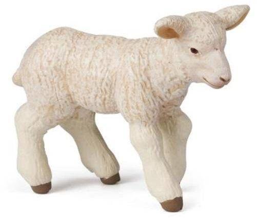 Owieczka - PAPO