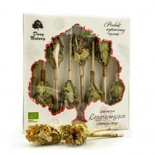 Herbatka na patyku ROZGRZEWAJĄCA BIO (8 x 2,5 g) Dary Natury