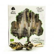 Herbatka na patyku ZIOŁOWY OGRÓD BIO (8 x 2,4 g) Dary Natury