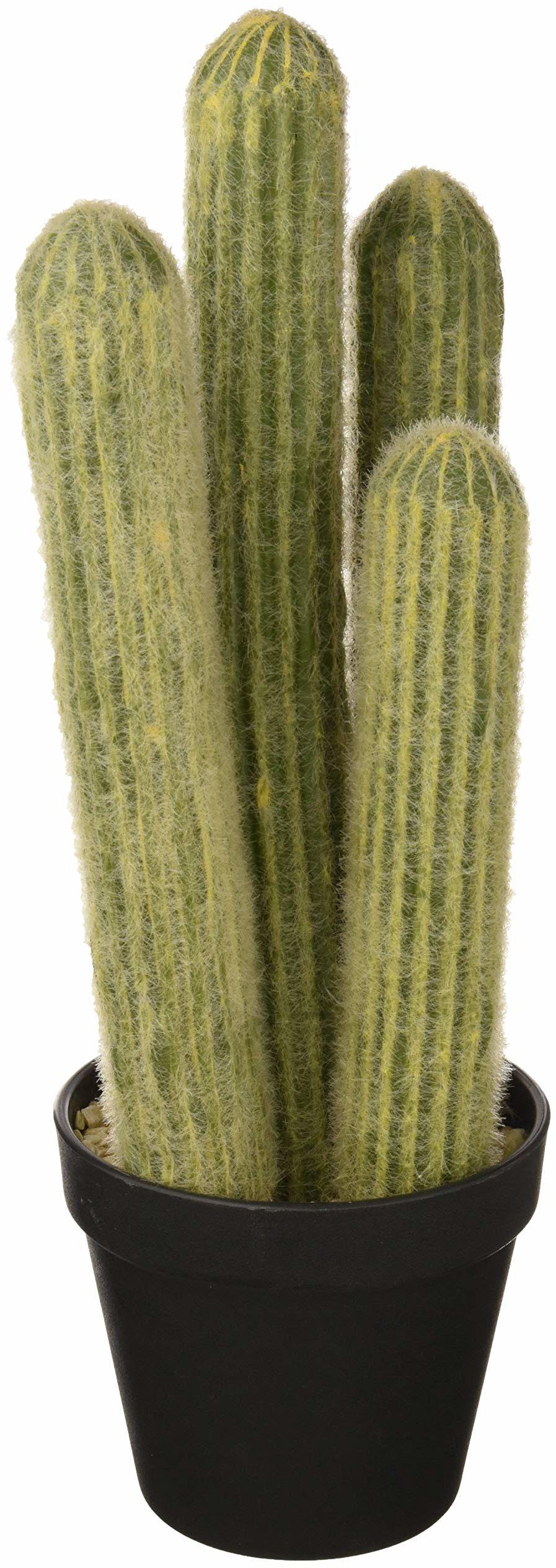 ASA 66216444 kaktus srebrna świeca w doniczce aktus, tworzywo sztuczne, zielona