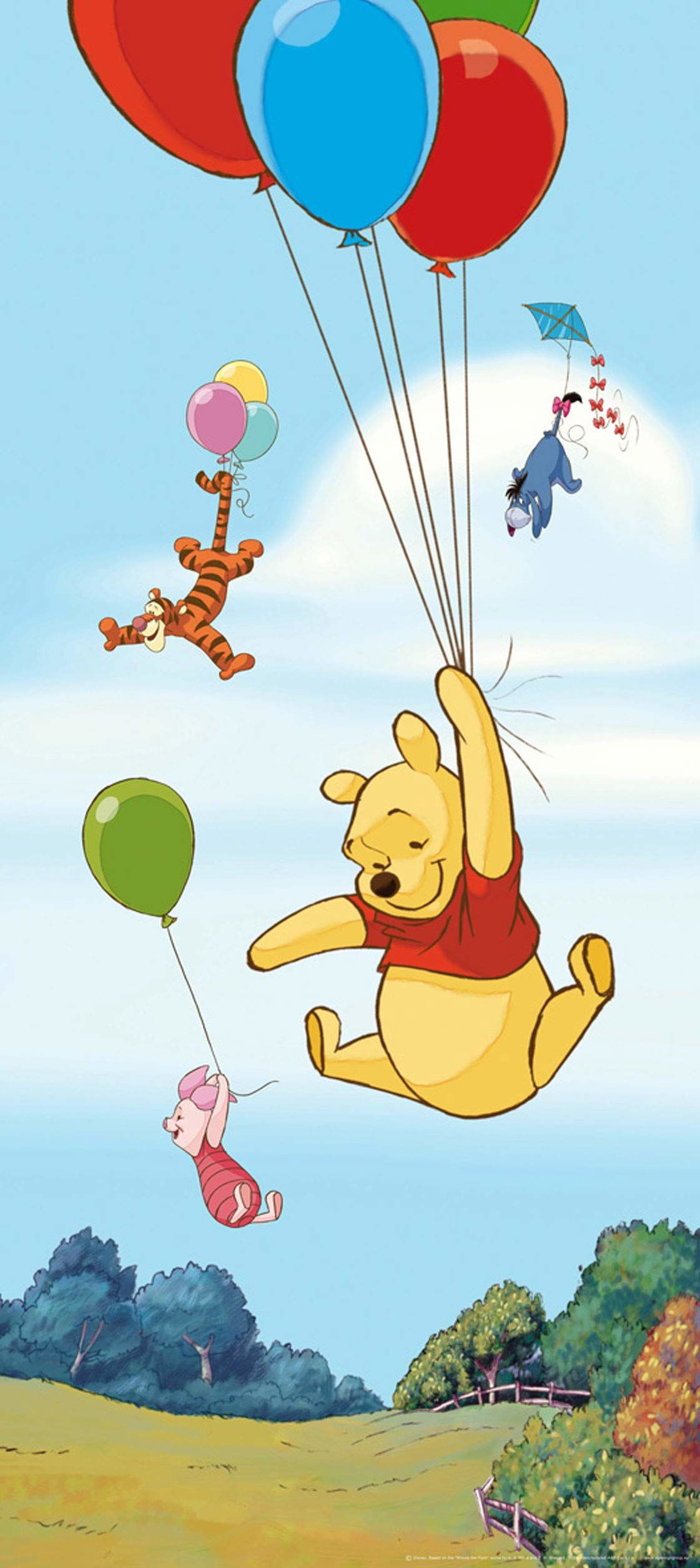 Fototapeta FTDNv5461 Photomurals Disney Winnie The Pooh
